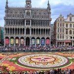 """【ベルギー】世界で最も美しい広場で行われる2年に1度の花の祭典""""フラワーカーペット"""""""